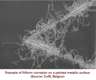 Filiform Corrosion